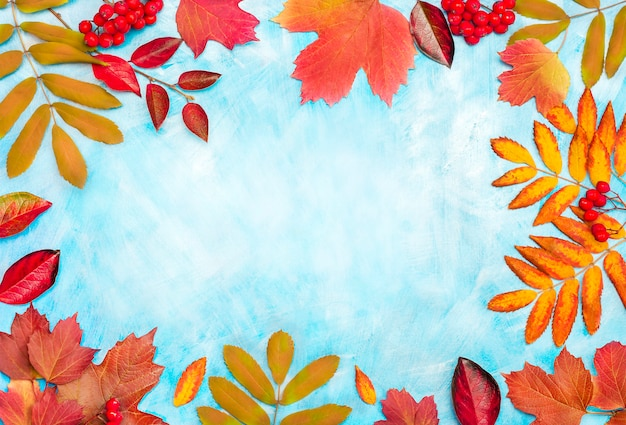 Autumn red leaves on blue background