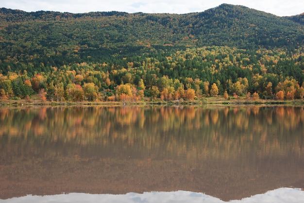 Autumn reflections of the manjerokskoe lake  altai republic russia