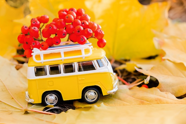 Autumn retro yellow van bus with with rowan berries on autumn maple leaf. funny retro toy car.