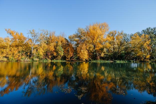 Осенний берег реки с красочными деревьями