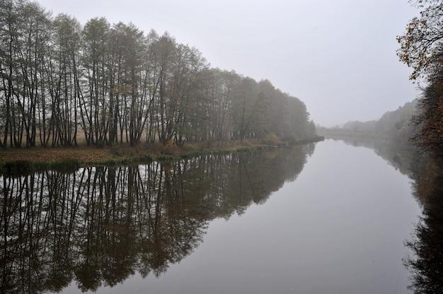 霧の中の秋の川と葉のない木々