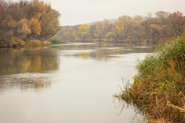 秋の川、風景、秋の曇りの天気