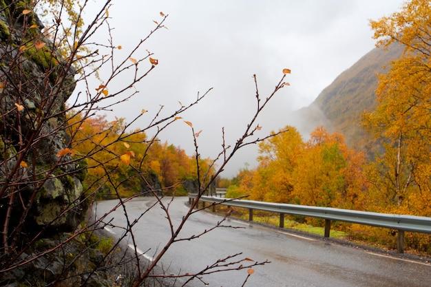 霧深い天気のノルウェーの山々の秋の道