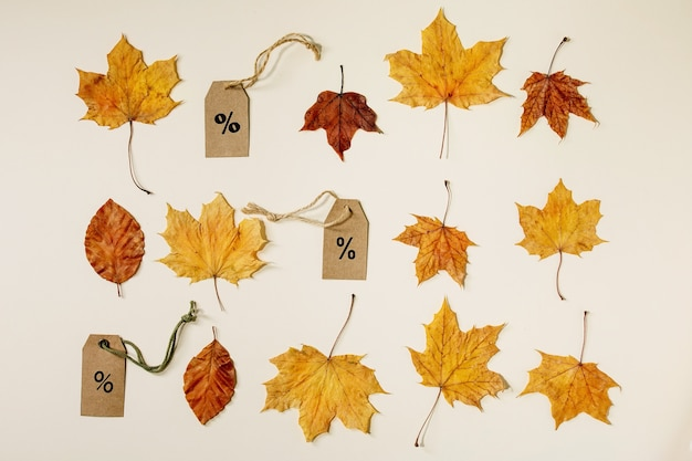 Autumn sale concept. cardboard labels with percents, variety of yellow autumn leaves in row over beige background. flat lay.