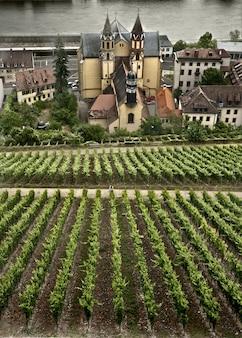 Scena autunnale intorno alla città bavarese di wurzburg, germania