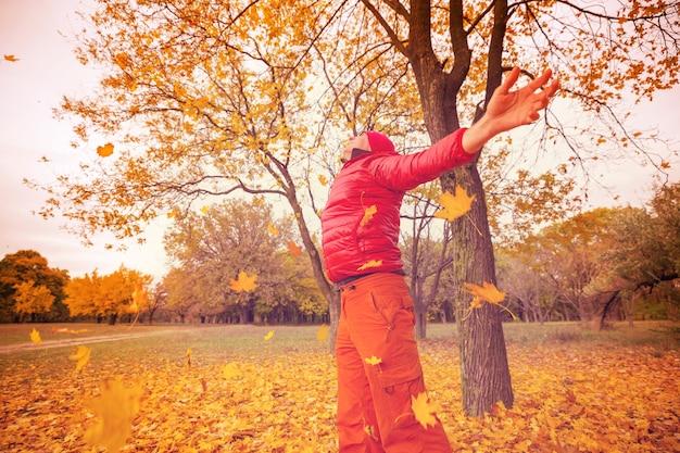 黄色がかった秋のシーン
