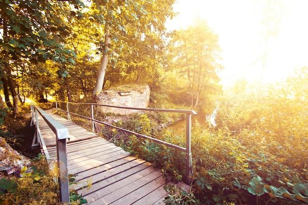 Autumn scenery.