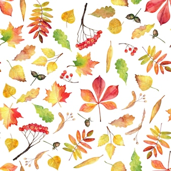 Autumn seamless pattern. watercolor leaves.