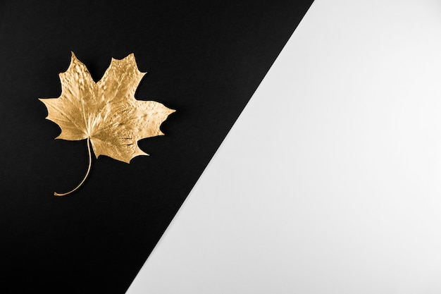 秋の季節の抽象的な背景。黒と白の背景に黄金の葉を落とします。