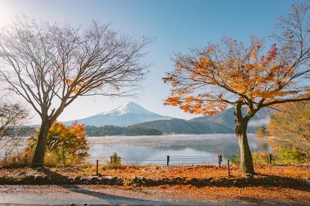 秋の季節には、河口湖の湖畔に夕方の光と赤い葉が茂る富士山。