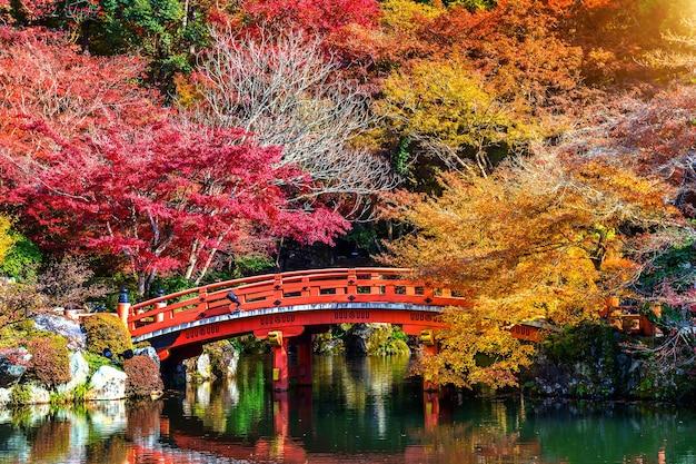 Осенний сезон в японии, красивый осенний парк.