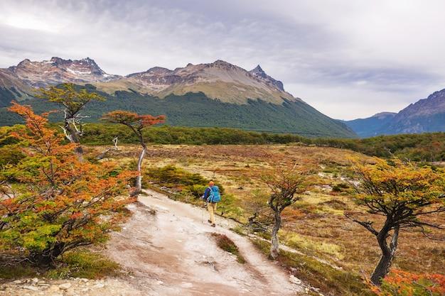パタゴニア山脈、南アメリカ、アルゼンチンの秋のシーズン