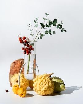 옅은 노란색 장식 호박과 그림자와 흰색 배경에 유리 꽃병에 유칼립투스 가을 계절 구성