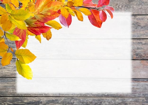 가을 계절 잎, 배너 템플릿