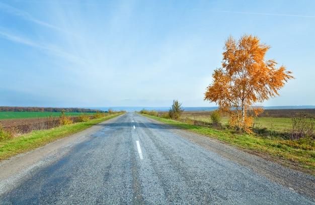 가을 이차 시골길과 측면에 노란 자작나무