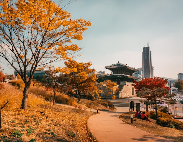 Autumn in seoul. park with national building