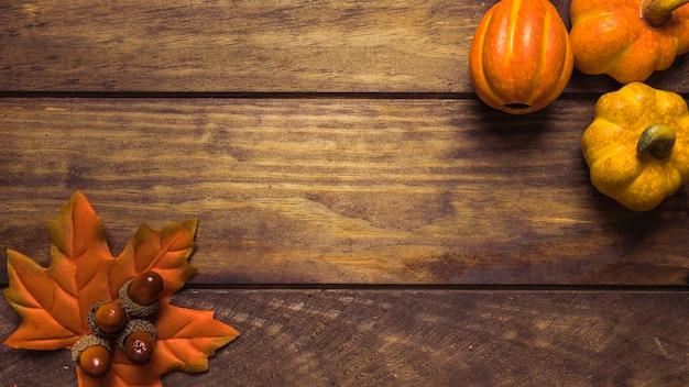 Autumn set with acorns and pumpkins