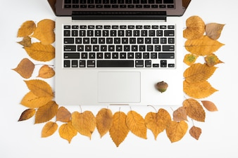 Autumn set with laptop and acorn