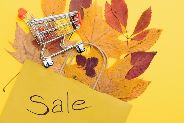 Autumn shopping with discounts, autumn sales