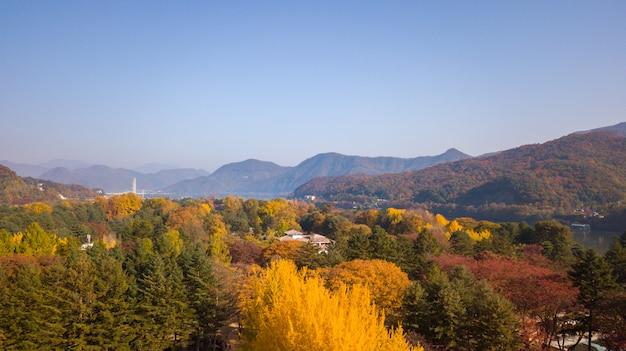 Autumn in south korea