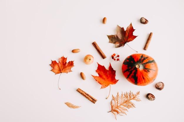 Осенний натюрморт и рамка с желудями из тыквенных листьев на белом фоне с копией пространства