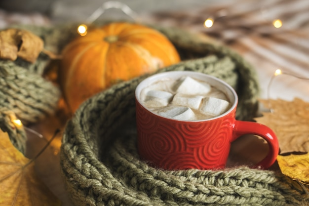Autumn still life from pumpkin, leaves, scarf, red mug of cocoa with marshmallow