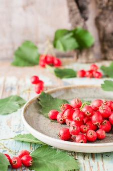 Autumn still life harvest of hawthorn berries with leaves on a plate on a rustic