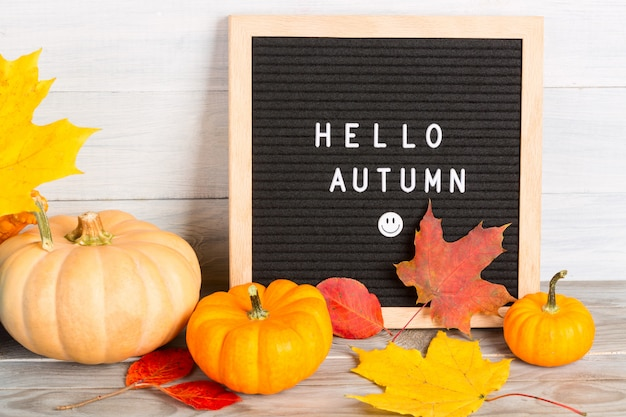 Autumn still life image with pumpkins, colorful maple foliage and letter board with words hello autumn against white wooden wall.