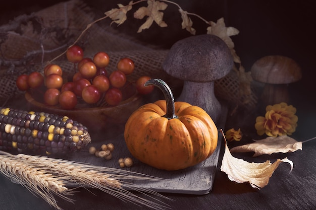 Autumn still life in low key with small orange pumpkin