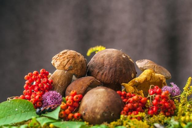 Autumn still life of mushrooms
