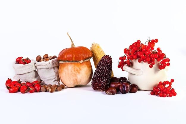 Осенний натюрморт тыква каштаны кукурузные орехи калина шиповник, изолированные на белом фоне