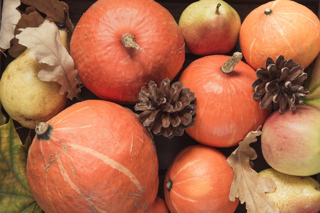 Autumn still life with leaves, pumpkins, apples.