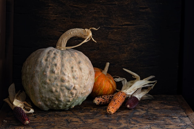 Autumn still life with pumpkins and corn on old wooden table.