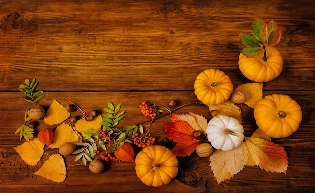 Autumn still life with pumpkins and yellow flowers concept festive decoration for thanksgiving day.