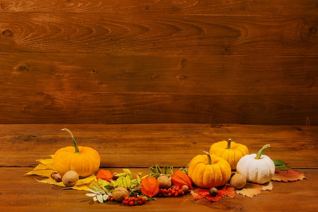 Autumn still life with pumpkins and yellow leaves concept festive decoration for thanksgiving day