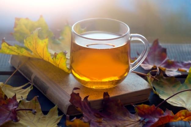 노란색 단풍, 차 한잔과 나무 배경에 오래 된 책 가을 정물화