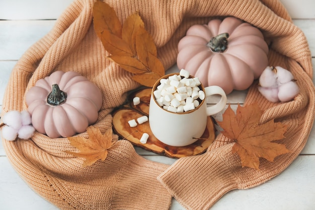 Autumn still life on wooden background with cocoa mug and marshmallows, pink pumpkins, autumn leaves, knitted sweater