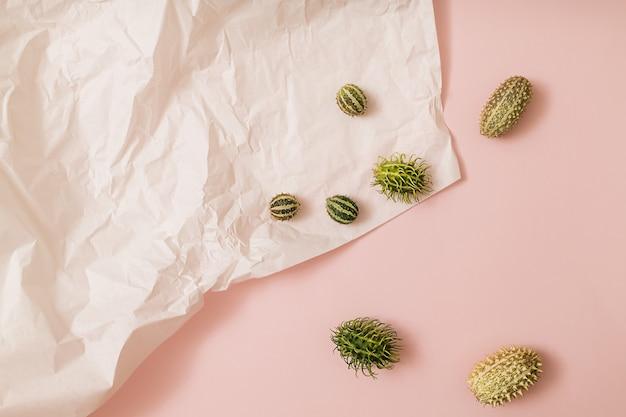 カボチャと緑の季節の果物と秋の太陽に照らされたピンクと白の背景。フラットレイ収穫またはハロウィーンの概念。カラフルな野菜のクリエイティブなレイアウト。スペースをコピーします。