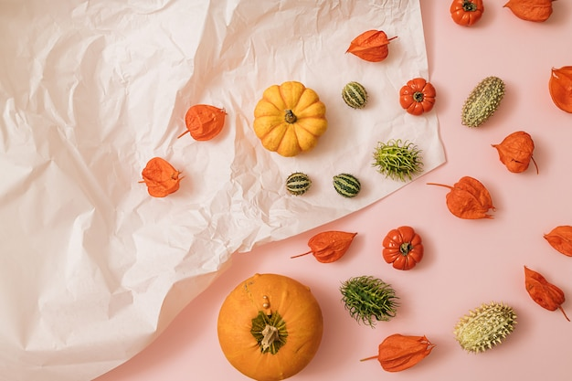 カボチャ、サイ、トマト、緑の季節の果物と秋の太陽に照らされたピンクと白の背景。フラットレイ収穫またはハロウィーンの概念。カラフルな野菜のクリエイティブなレイアウト。スペースをコピーします。