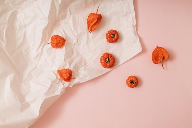 カボチャ、サイ、トマトと秋の太陽に照らされたピンクと白の背景。フラットレイ収穫またはハロウィーンの概念。カラフルな野菜のクリエイティブなレイアウト。スペースをコピーします。