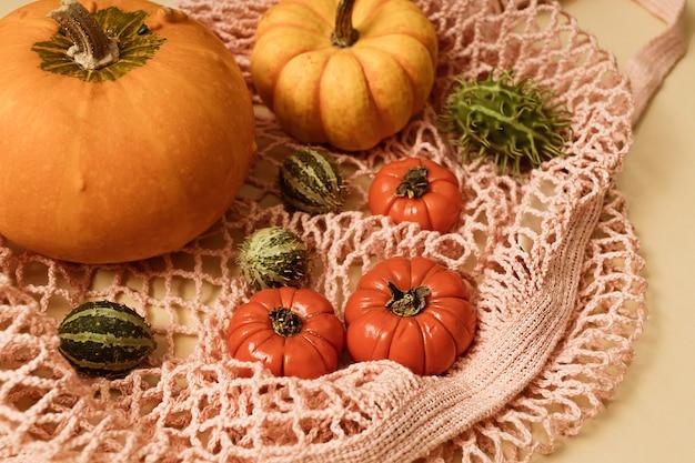 ピンクのエコメッシュバッグにカボチャ、サイサリス、トマト、緑の季節の果物と秋の太陽に照らされた黄色の背景。フラットレイ収穫またはハロウィーンの概念。カラフルな野菜のクリエイティブなレイアウト。