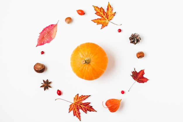 Autumn or thanksgiving background with fall leaves, flowers, pumpkins and nuts