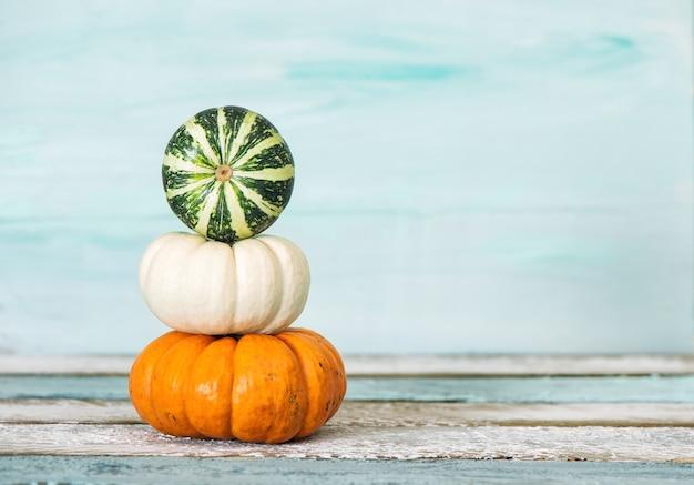 Autumn thanksgiving pumpkin decoration blue background