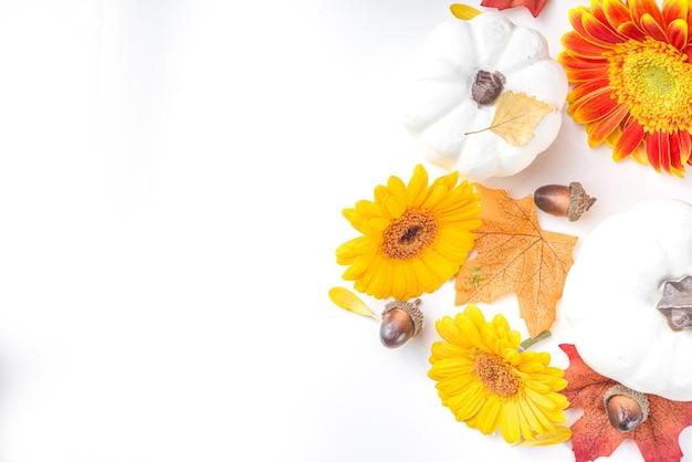 Осенняя тема концепции. плоская композиция с яркими цветами, красно-желтыми листьями, белыми тыквами на белом фоне. яркая осень, концепция день благодарения. плоская планировка, вид сверху, копия пространства