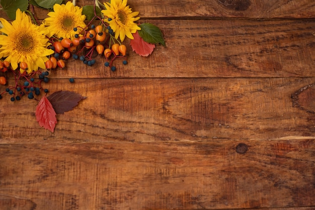 Autumn theme. wooden background with sunflower flowers, berries and leaves in the corner