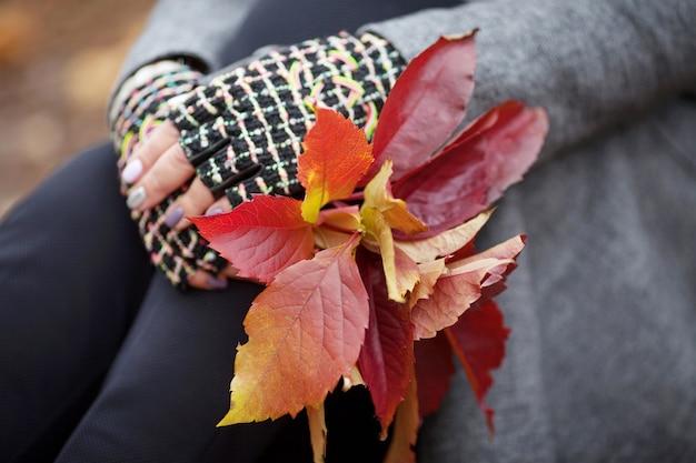 秋の時間。乙女のブドウのカラフルな葉の花束を持っている女性の手。画像をクローズアップ。