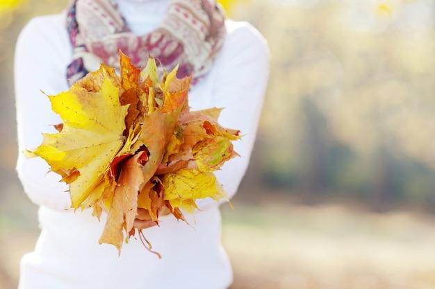 秋の時間。カラフルなカエデの葉の花束を持っている女性の手。画像をクローズアップ。写真を閉じる