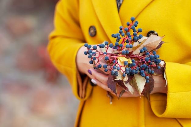 秋の時間。乙女のブドウの葉と果実の花束を持っている女性の手。画像をクローズアップ。コピースペース