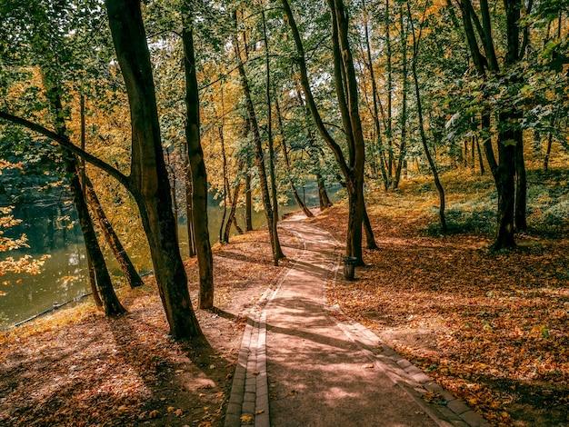 Autumn trail in sunny park. tsaritsyno. moscow.