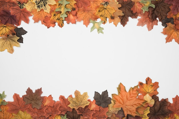 Autumn tree leaves top side frame pattern